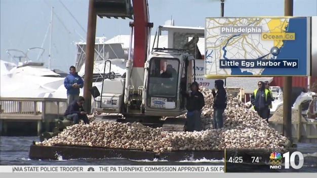 College Students Build Oyster Habitat