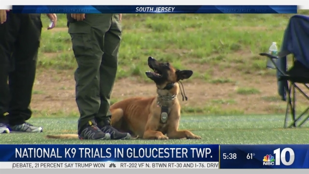 National K-9 Trials in South Jersey