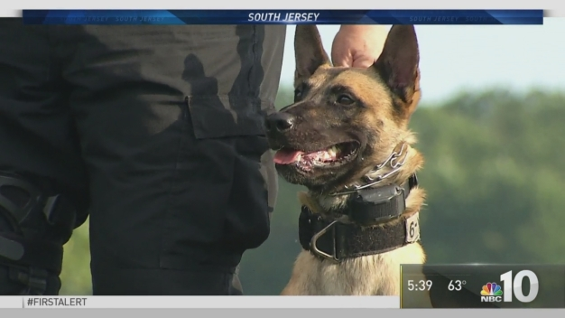 South Jersey Police Host 2016 National Patrol Dog Trials
