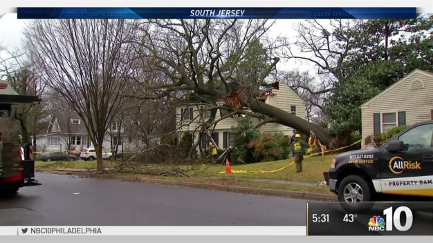 Tree Falls on South Jersey Home