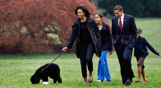 [NEWSC] First Dog Bo Arrives at White House
