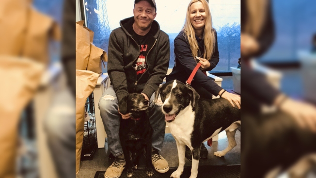 2 Dogs Whose Owner Wanted to Put Them Down Get Happy New Home in Tinley Park