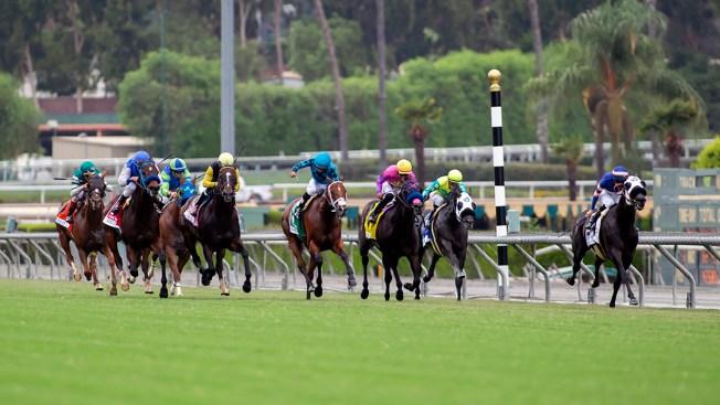 33rd Horse Dies at Santa Anita Since December