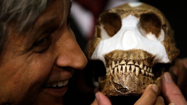 Scientists Discover Homo Naledi, Early Human Ancestor