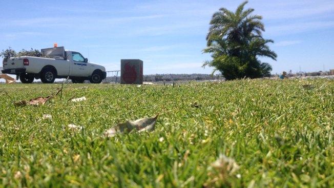 """Children Cut By Razor Blades """"Planted"""" in San Diego Park"""