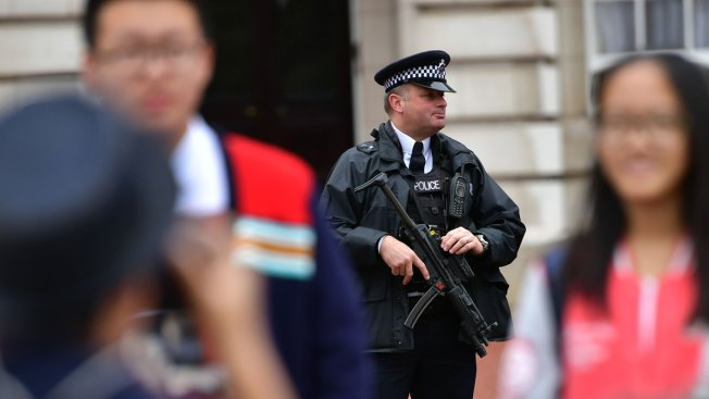Intruder Tried to Climb Buckingham Palace Fence: Police