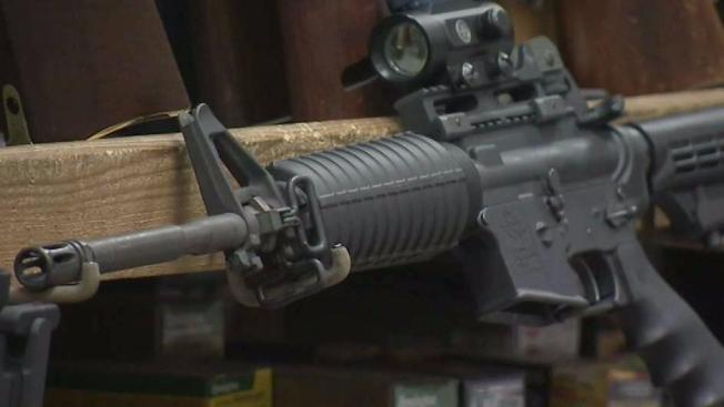 Democrats Unveil Bill to Ban Assault-type Rifles in Delaware