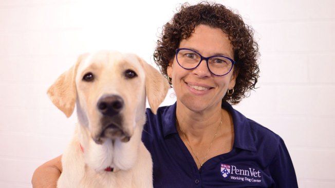 Dr. Cindy Otto Honored With 'Dogs' Best Friend Award'