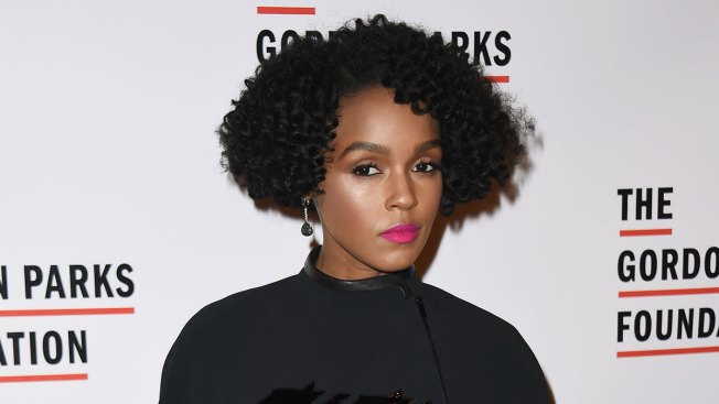 Singer Janelle Monáe Condemns Gun Violence as Cousin Killed in Drive-By Shooting