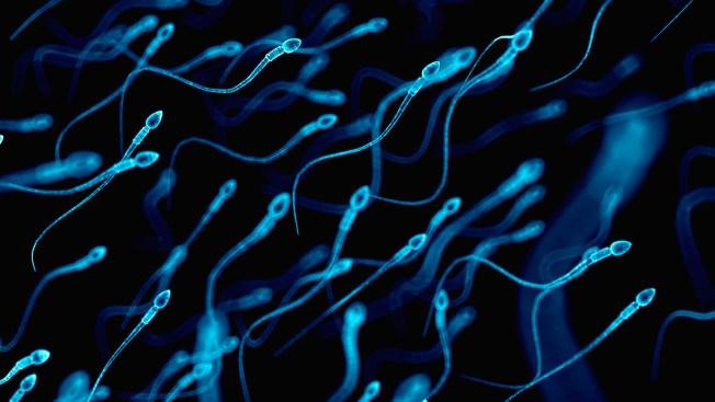 Plunging Sperm Counts a 'Major Public Health' Crisis, Researcher Says
