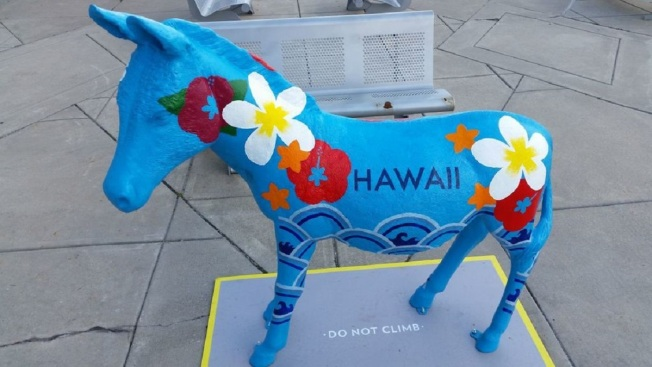 DNC Donkey Auction: Have You Placed Your Bid?