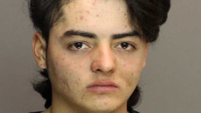 Teen Tries to Rape Woman at Park: Police