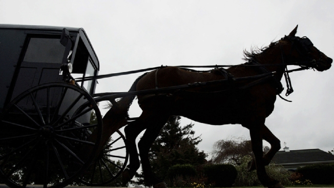 One airlifted, two hospitalized after horse-and-buggy crash in Yates County