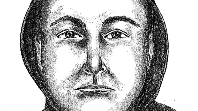 Man Forces Woman Into Van, Attacks Her: Police