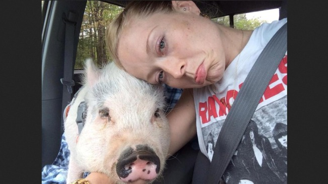 NJ Woman Forced to Part With Pet Pig