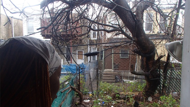 City: Alleyways Are Not Our Responsibility
