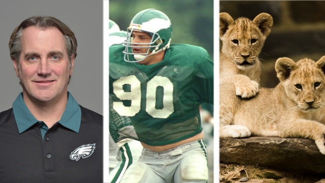 Roob's 25 Random Points: Cory Undlin, Mike Golic and Access to the Zoo