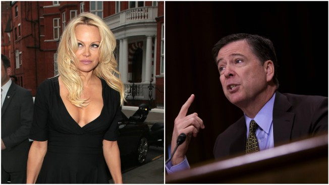 The World Needs More 'Intelligence Porn': Pam Anderson Responds to Comey Slam That WikiLeaks isn't Journalism