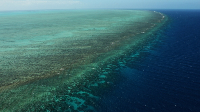 Australia Lowers Great Barrier Reef Outlook to 'Very Poor'