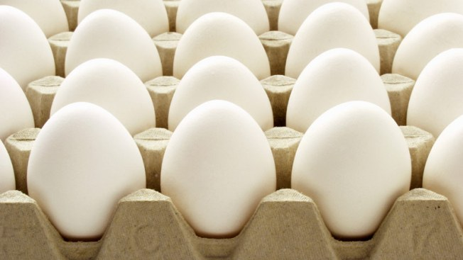 Cage-Free Eggs Cost Rutgers Students