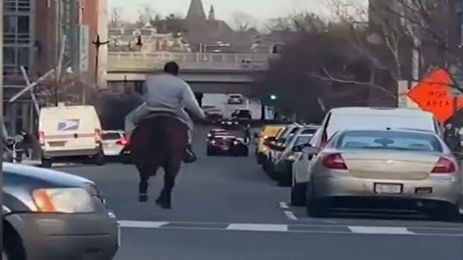Man Attacks Police Horse, Officer Outside Eagles' Stadium