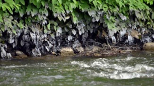 River Oil Spill Investigated