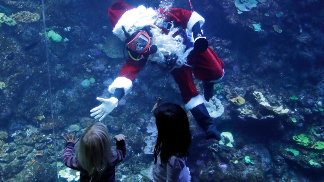 Things to Do In and Around Philly This Weekend: Dec. 7-9