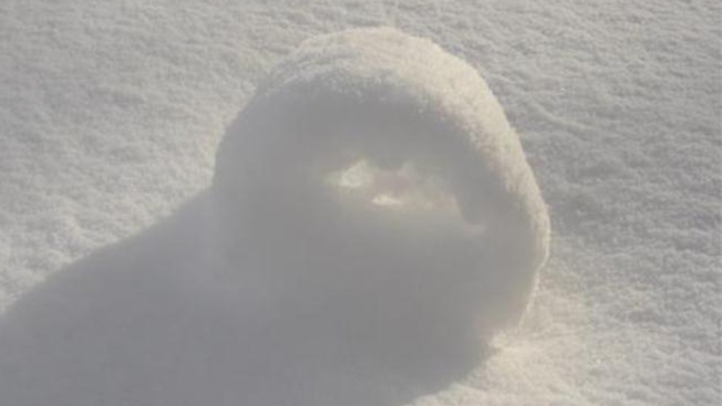 "Wind, Snow Create Rare ""Snow Rollers"""