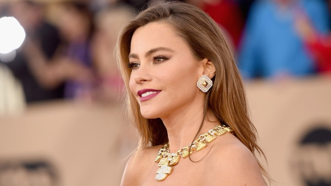 Sofia Vergara Can Sue to Stop Former Fiance From Using Frozen Pre-Embryos, Judge Rules