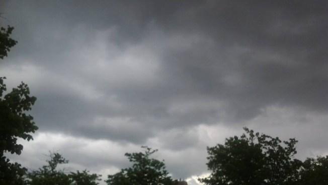 Monday's Storms Do More Damage to Bird Rehab Than Sandy