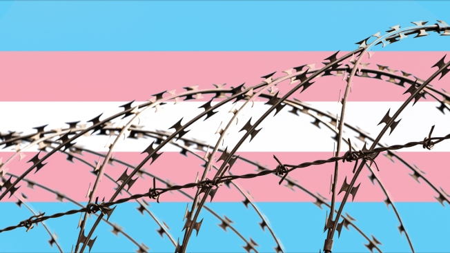 From Honduras to California: A Trans Woman's Harrowing Journey Through the Asylum Process