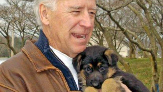 "Biden's Puppy Breeder: ""Never, Never, Never Again"""