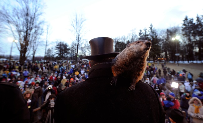 Annual Groundhog Day Celebration Coming to Pa.