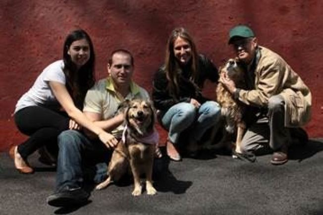 Family Adopts Dog That Raced Metro-North Train