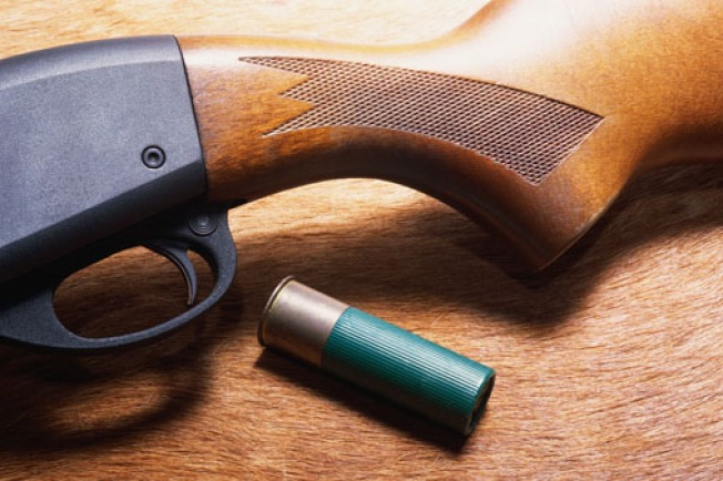 Loaded Shotgun Found in Milford Student's Car in School Parking Lot: Cops