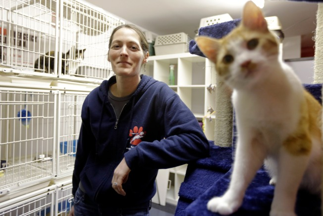 Philly Group Gives Helping 'Paw' to Displaced Pets