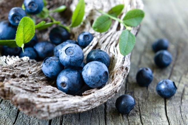Bethlehem's Blueberry Thrill