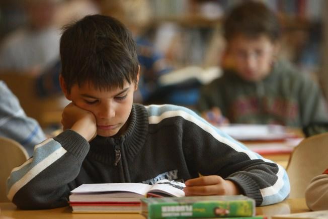 The Teacher Says: Homework Help Now