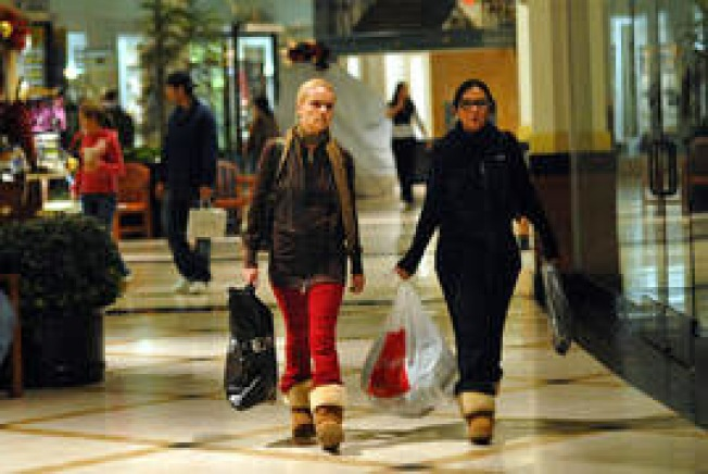 Black Friday Shoppers Unite at the Mall