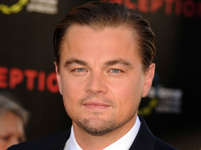 Leonardo DiCaprio Attacker Receives Two-Year Prison Sentence