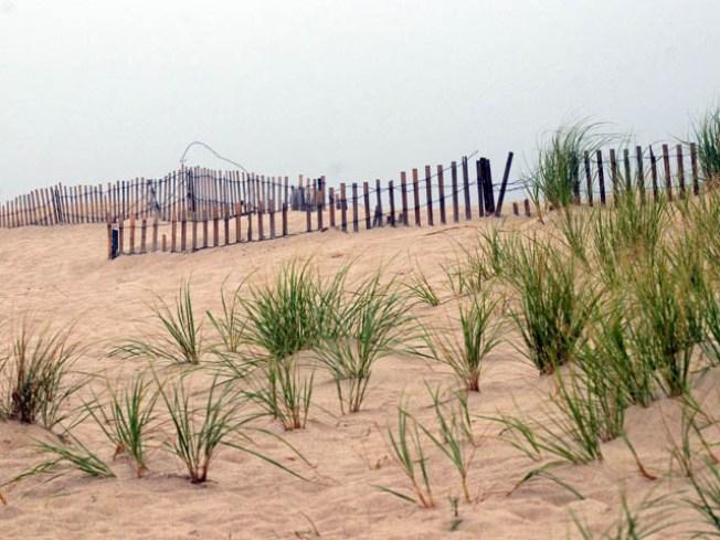 Supreme Court to Hear Beach Dune Case