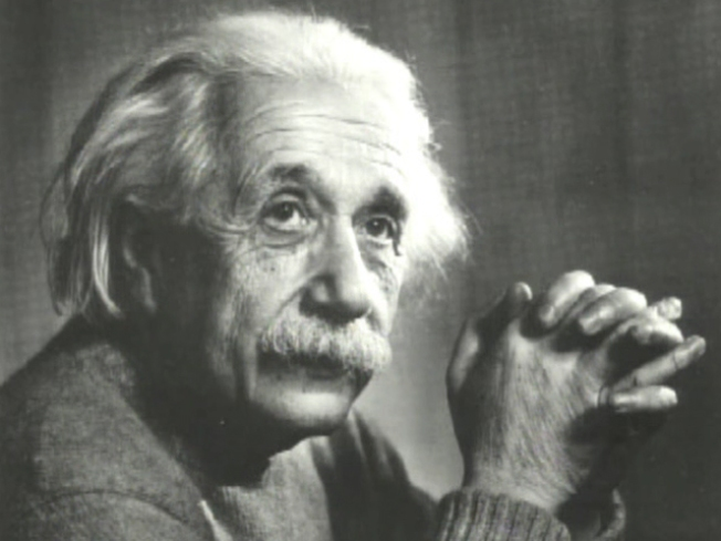 Get Inside Einstein's Brain