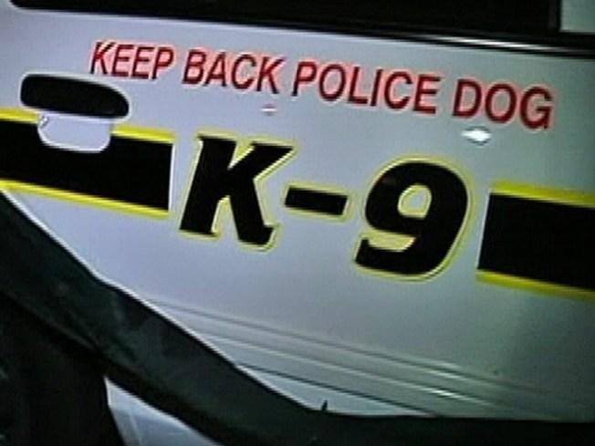 K-9 Nabs Car Thief Suspect