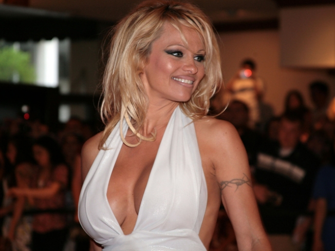 Meet Pam Anderson on the Main Line