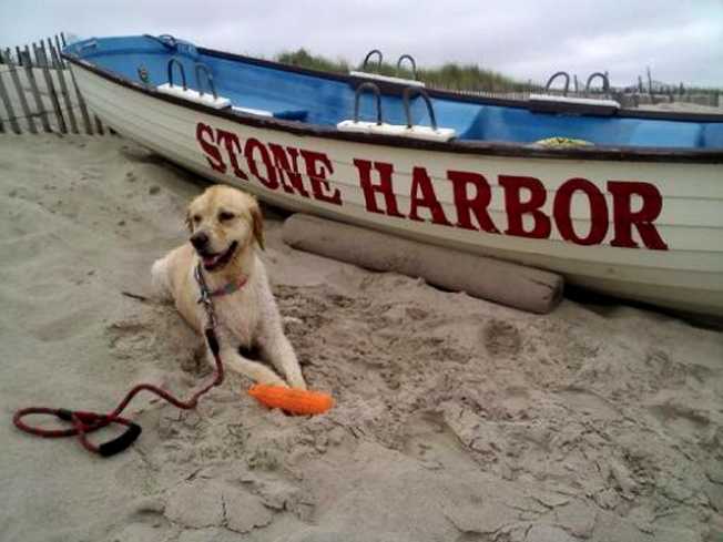 Stone Harbor: N.J.'s Best Kept Secret