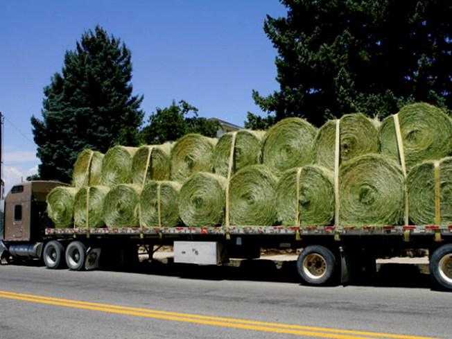 Falling Hay Bales Kill Driver