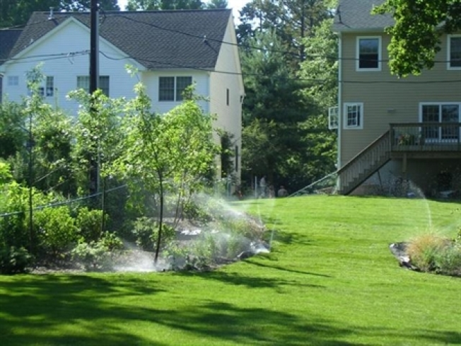 5 Tips for a Lush Winter Landscape