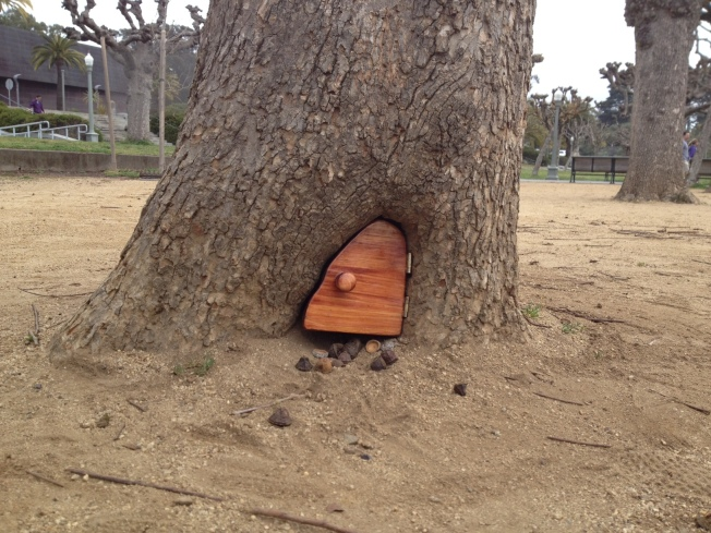 Mysterious Tiny Door in San Francisco Tree Replaced with Inferior Model