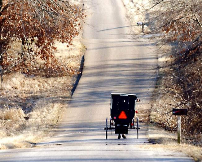 Man Admits Beating 'Amish Mafia' Star
