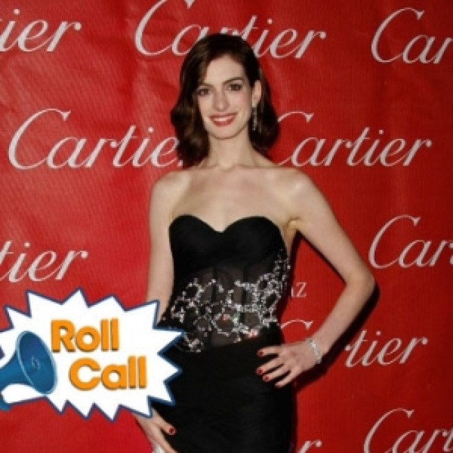 ROLL CALL: Anne Hathaway's New Guy